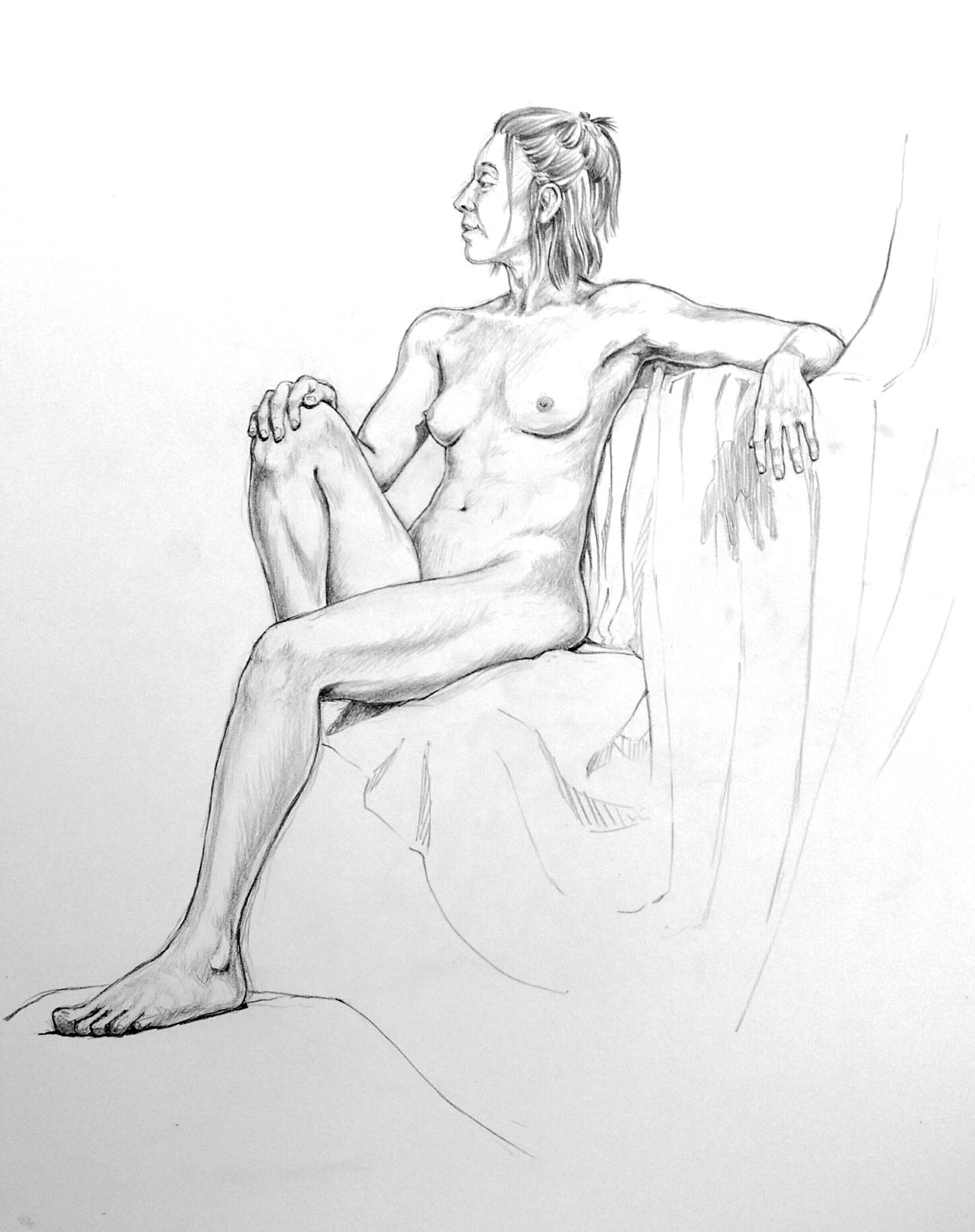 Young female nude, seated.